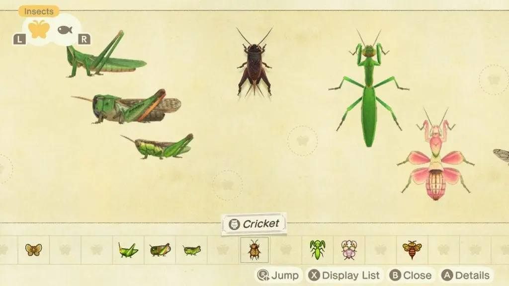 Insects Animal Crossing: New Horizons