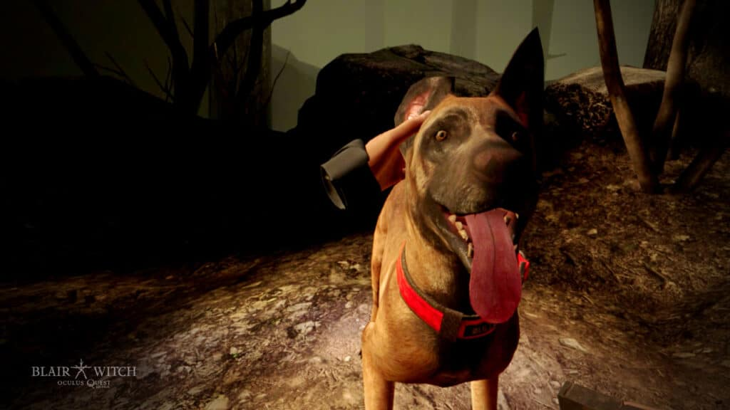 Blair Witch: Oculus Quest Edition Bullet Dog