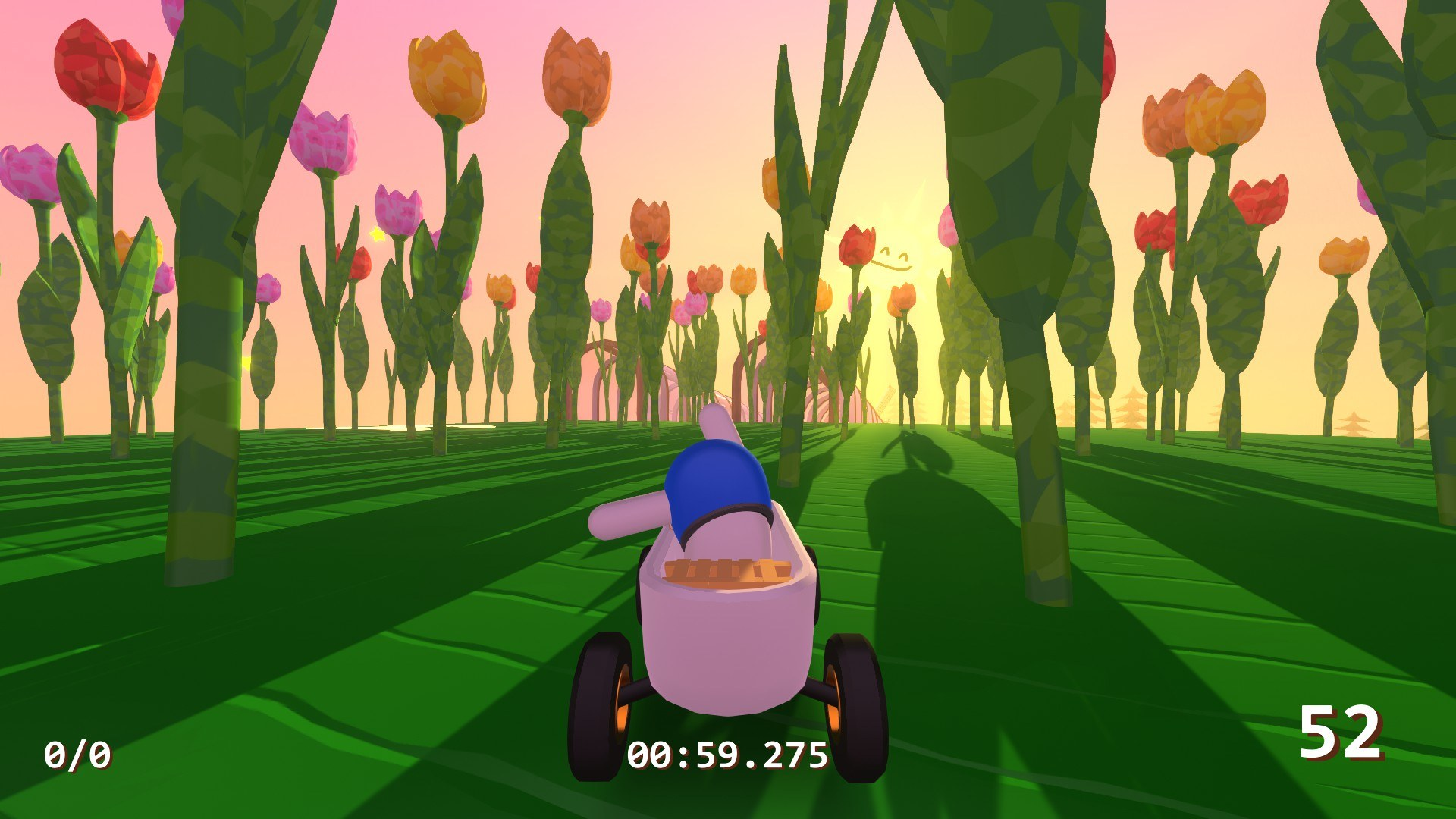 Zeepkist - Flowers