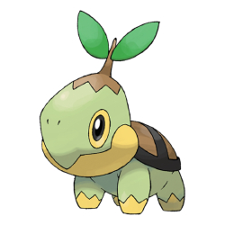 Starter Pokémon - Turtwig